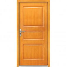 Venkovní vchodové dveře P1